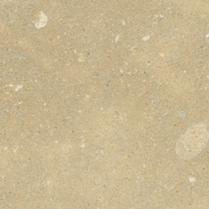 Ambar Apple Limestone Image