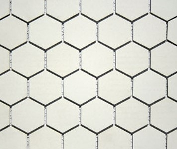 Hexagonal White Unglazed Image